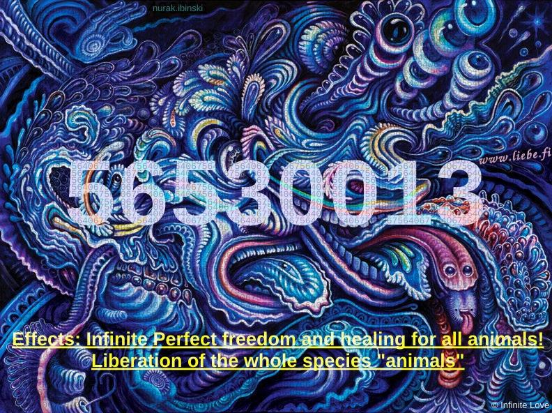 56530013 Infinitecode freedom+healing for animals!