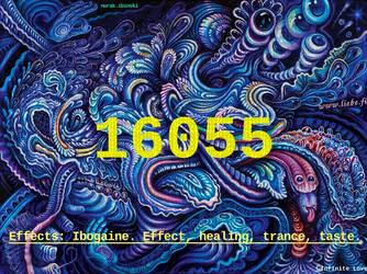 16055 Infinitecodes
