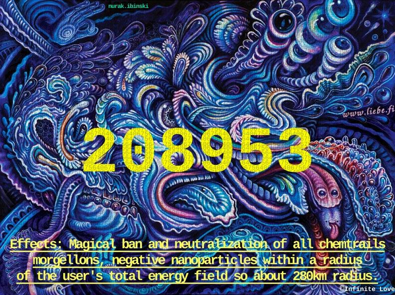 208953 Infinitecodes