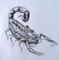 Scorpion by DanielleHope