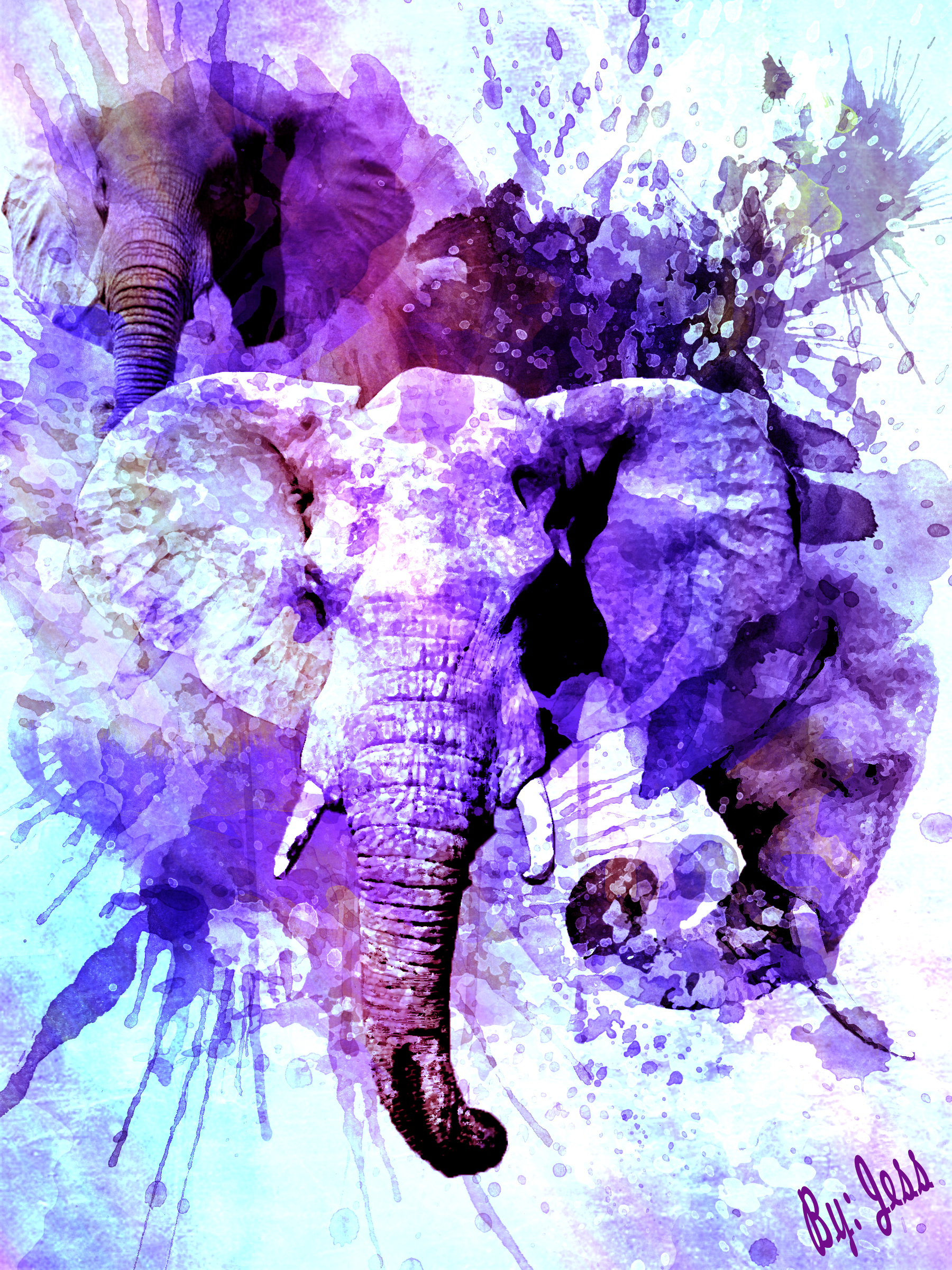 Elephant watercolor tumblr