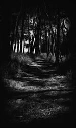 The Lost Path by soultaker82
