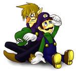 Luigi and Waluigi 4