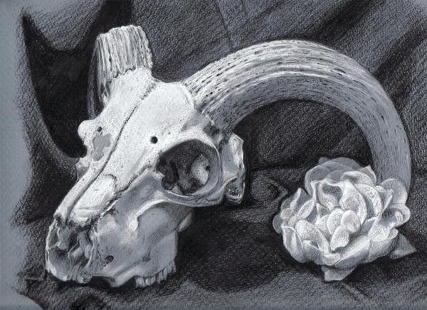 1. Ram Skull by Minuiko