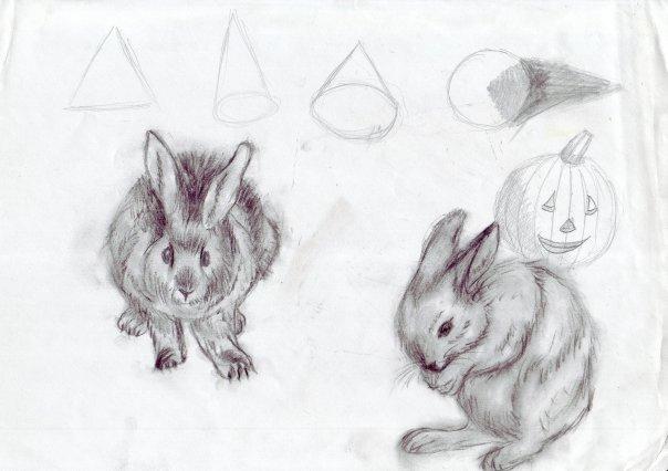 rabbit by JaiZub