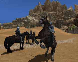 Baroness Alina and her knights in the desert by Brody2021
