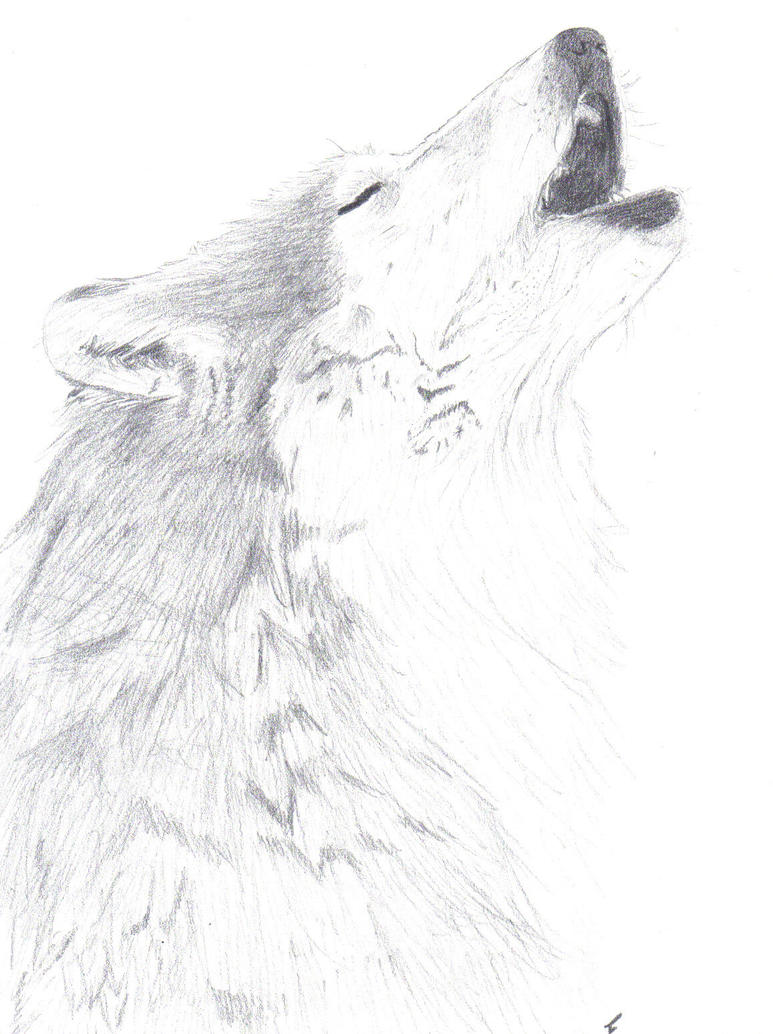 Howling Realistic wolf by Pup-Player on DeviantArt