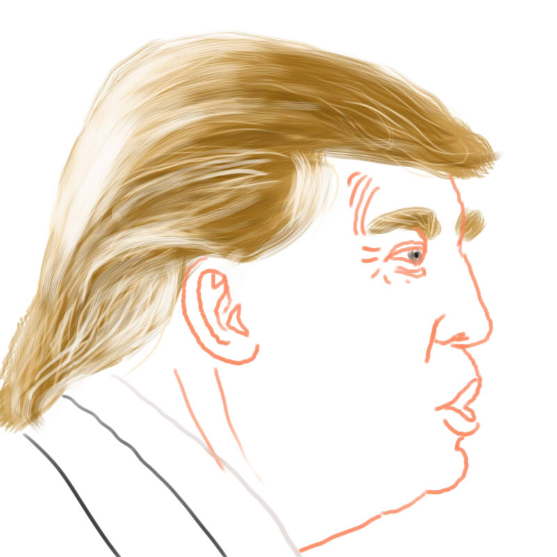 The Donald - Hair Practice 002 by kwikdraw