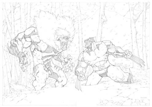 Wolverine VS Sabretooth Commission