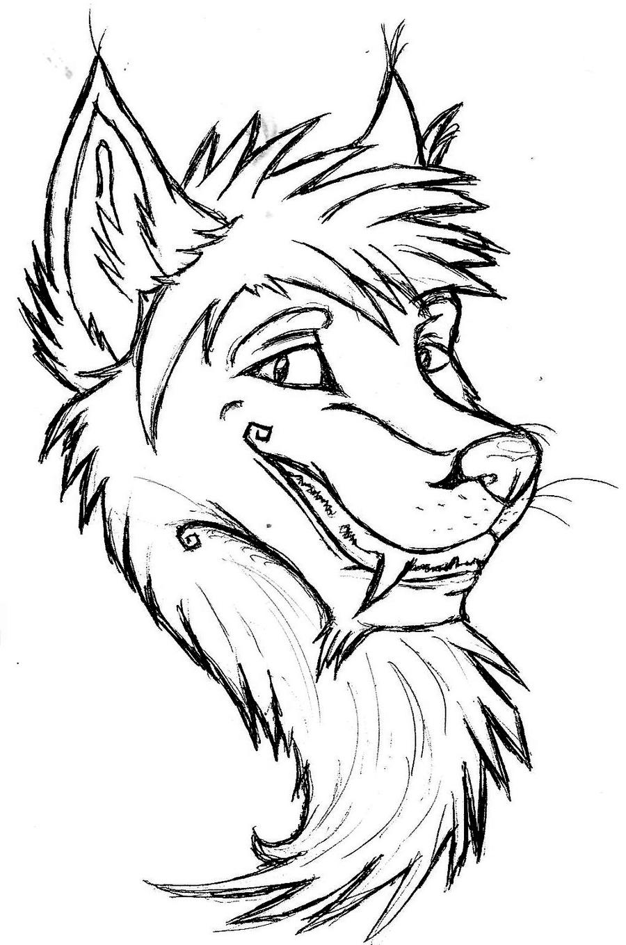 Line Drawing Wolf Head : Husky head outline by jared on deviantart