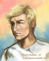 Hunger Games - Peeta - no.2 by lizzomarek