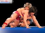 0092 Wrestling Nebraska-NC State