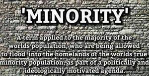Definition of Minority