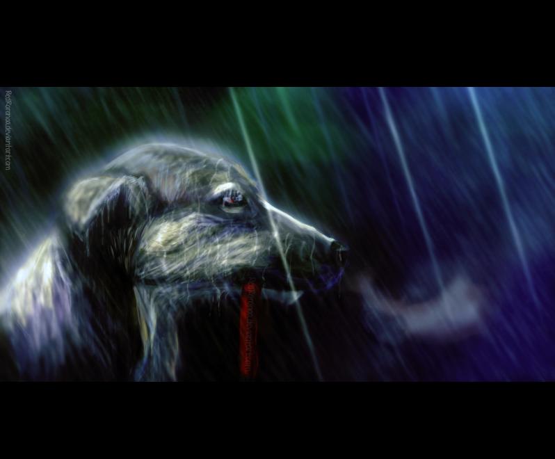 [55] Forgotten in the Rain by RedRoronoa