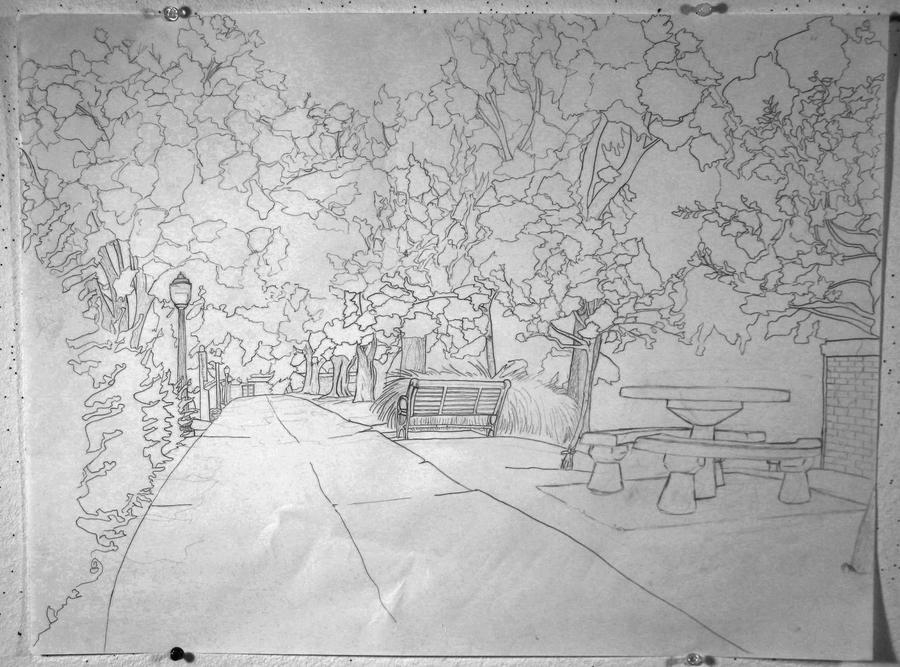 Line Drawing Garden : Contour line landscape by phoenixrising on deviantart