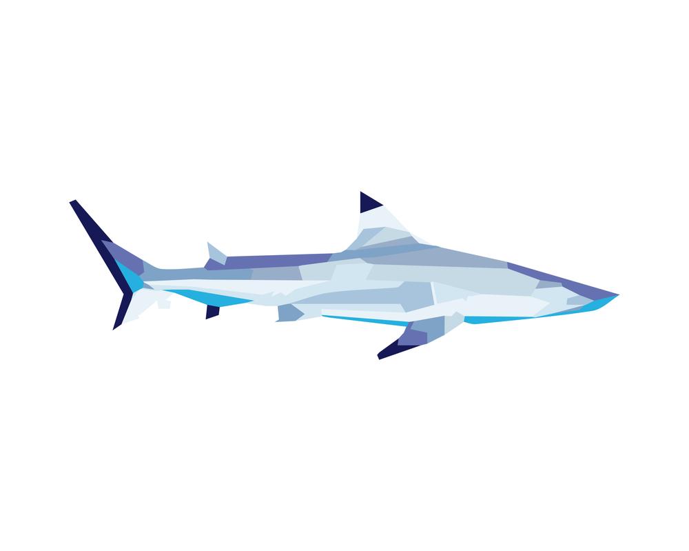 Shark for Sharkie by PlunderPixels
