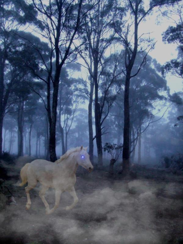 Phantom Horse by KaydeeJayde