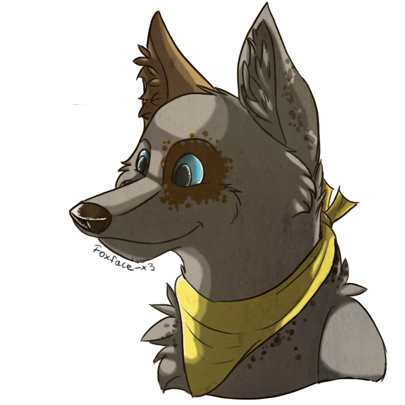 Cato by Foxface-x3