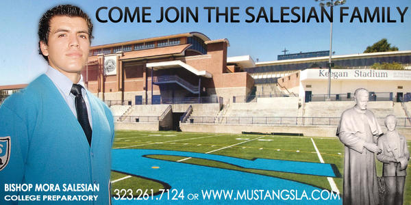 Salesian School Banner by cookiellvllonster