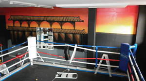 Temple Boxing Ring