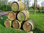 pile of wine barrels by schaduwvacht