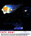 Woot Shirt - Wish Upon A Fox
