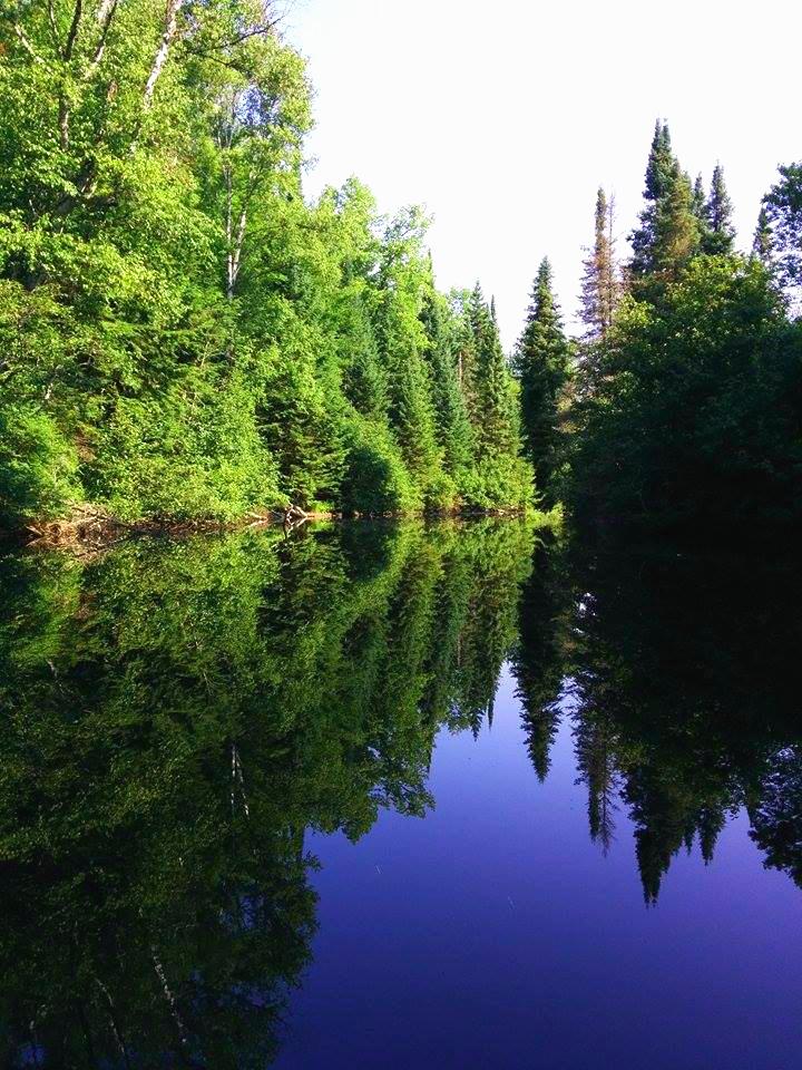 River in the Muskokas by lavendercustard