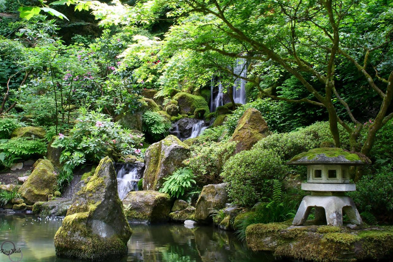 Portland Japanese Garden Waterfall By Ringmale On Deviantart