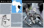 Atlas of Kaeba 5: Melor