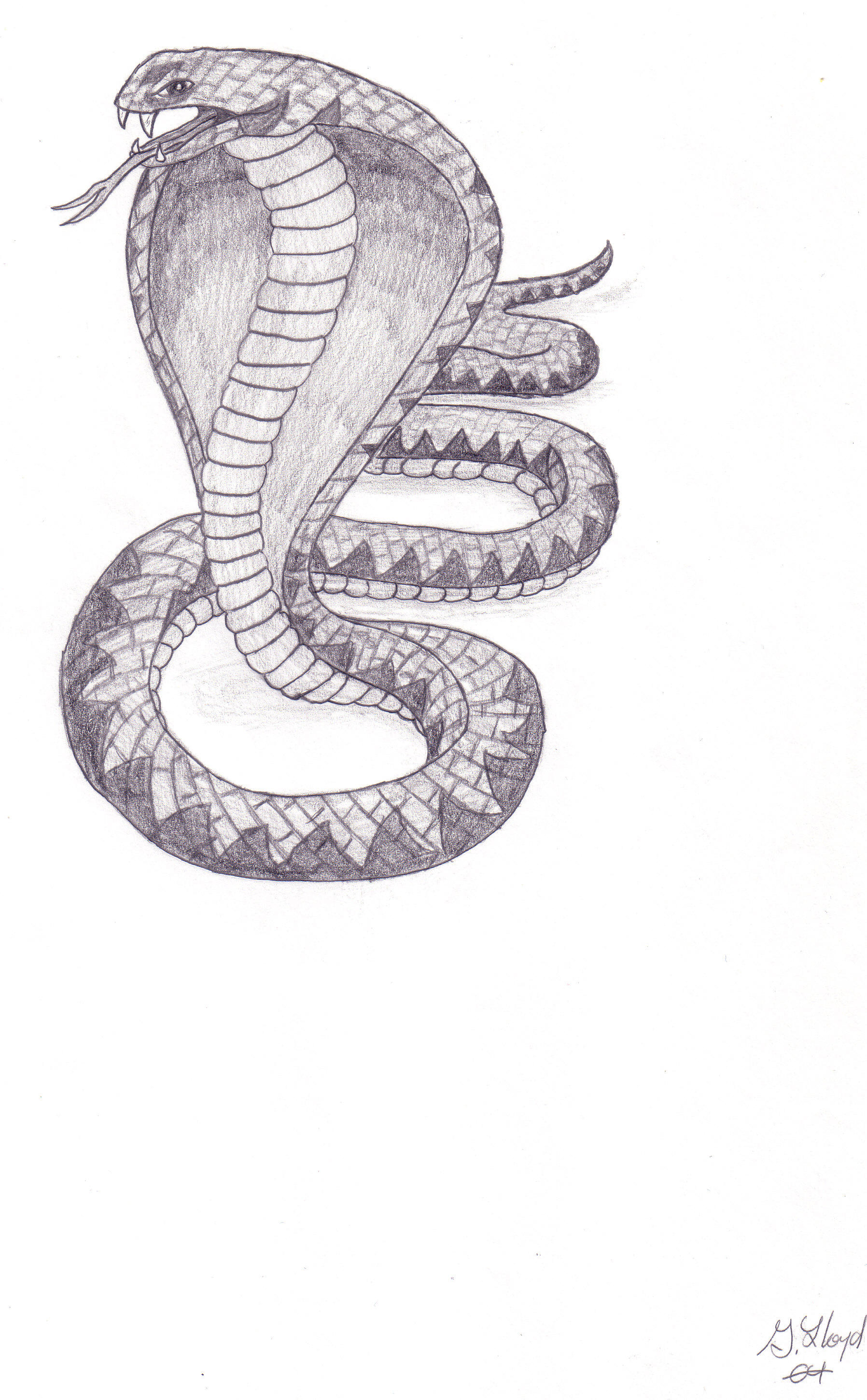 Cobra by CplLloyd on DeviantArt