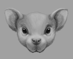 Rat Character Concept Head 1 by SpazzCreations
