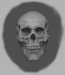 Skull Study by SpazzCreations