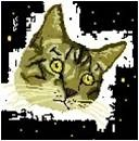 digital keiko edit by spacecats13