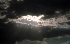 Rays by Daking9