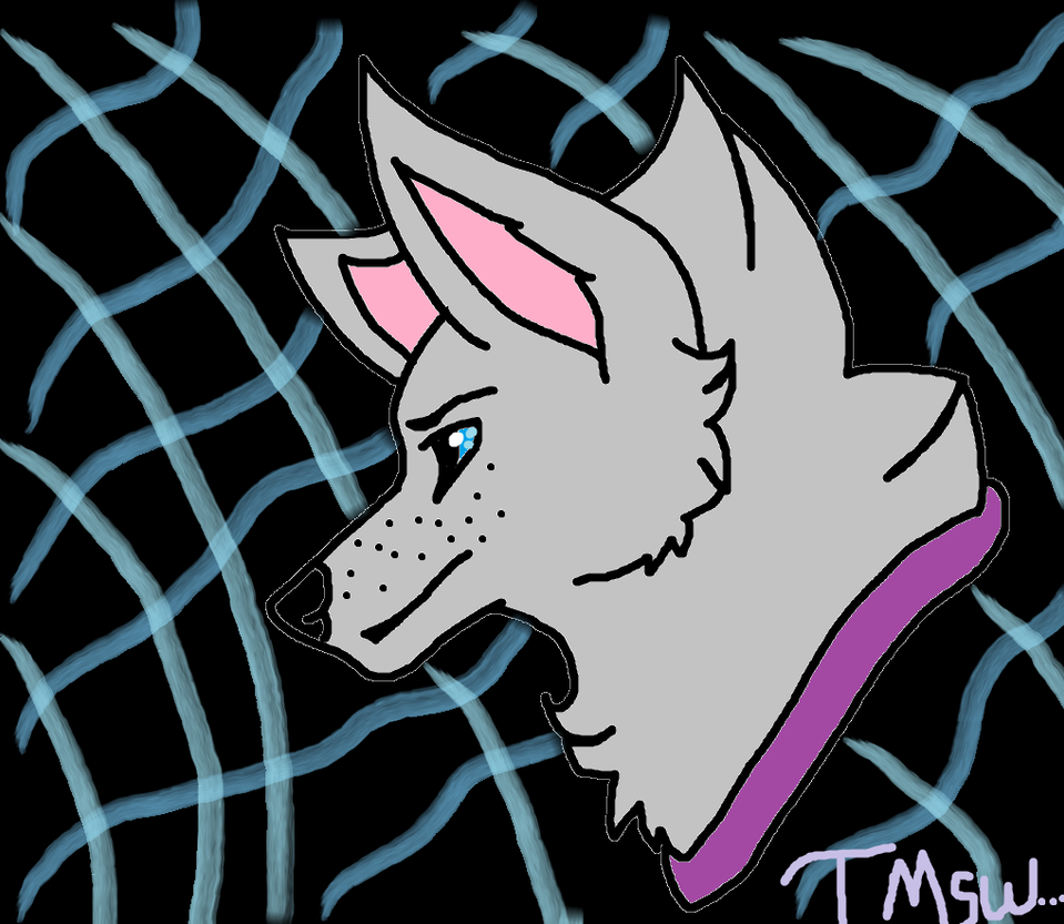 new profile pic by TheMidnightstarwolf