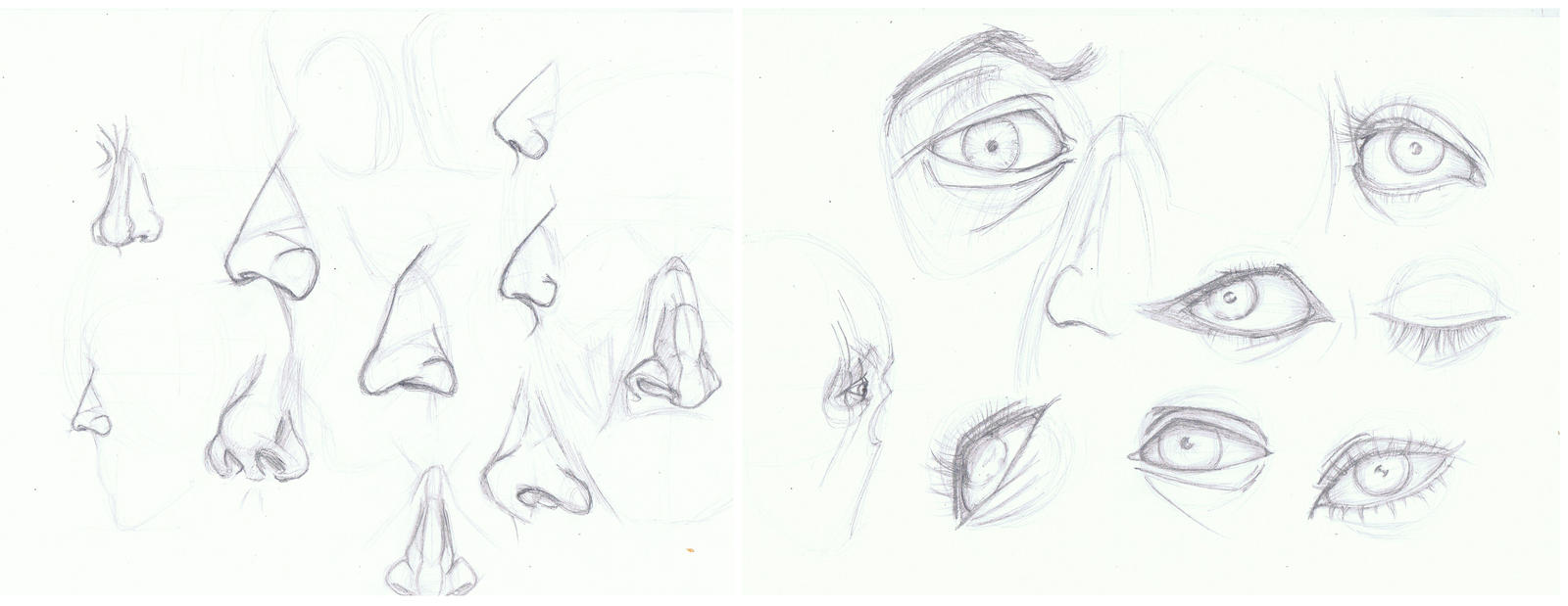 Eyes and Noses by TheBlack-Kat
