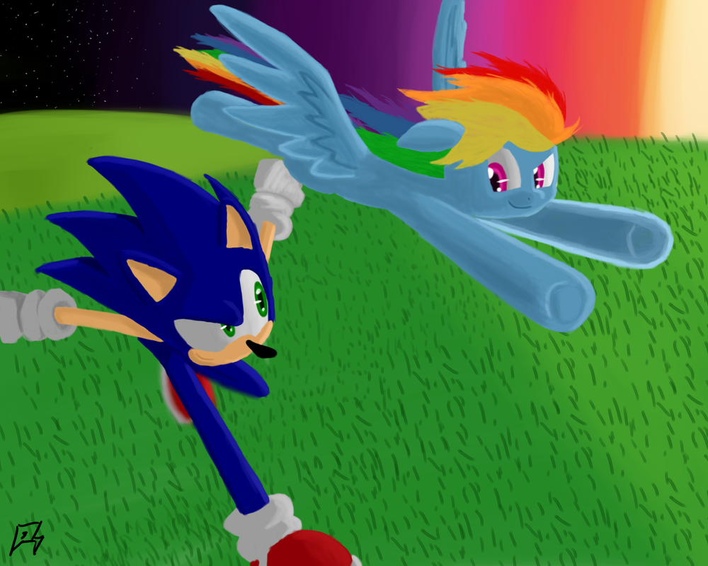 Sonic and Rainbow Dash: Race at Sunset by MegaArtist923