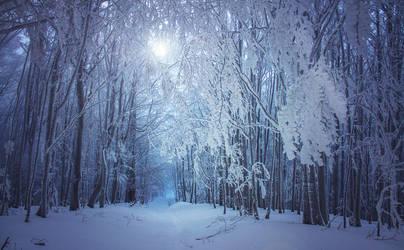 Frozen II by ferrohanc