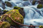 Cold River by ferrohanc