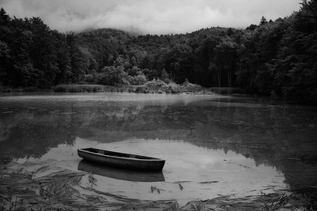 Lost... by ferrohanc