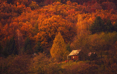 Autumn evening by ferrohanc