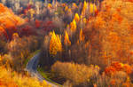 Colorful Road by ferrohanc
