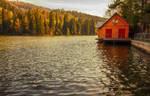Sunny Lake by ferrohanc