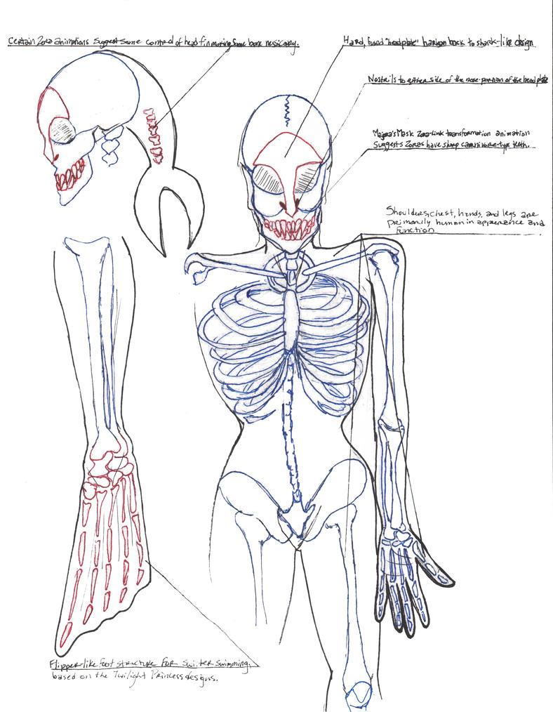 Zora Bone Structure by YourWaywardDestiny