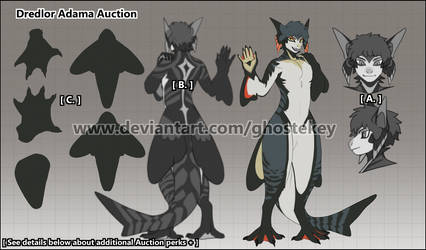 Dredlor Adama Auction - SOLD by GhosteKey