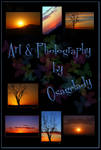 Art and Photography ID