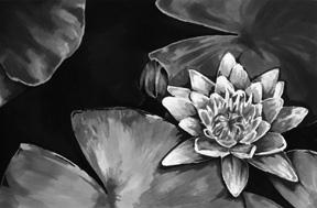 Water Lily by littleDarkMonkey