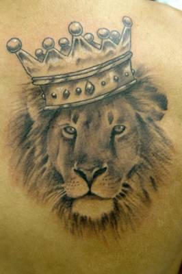 325ae638b lion tattoos. lion tattoos. King of the jungle