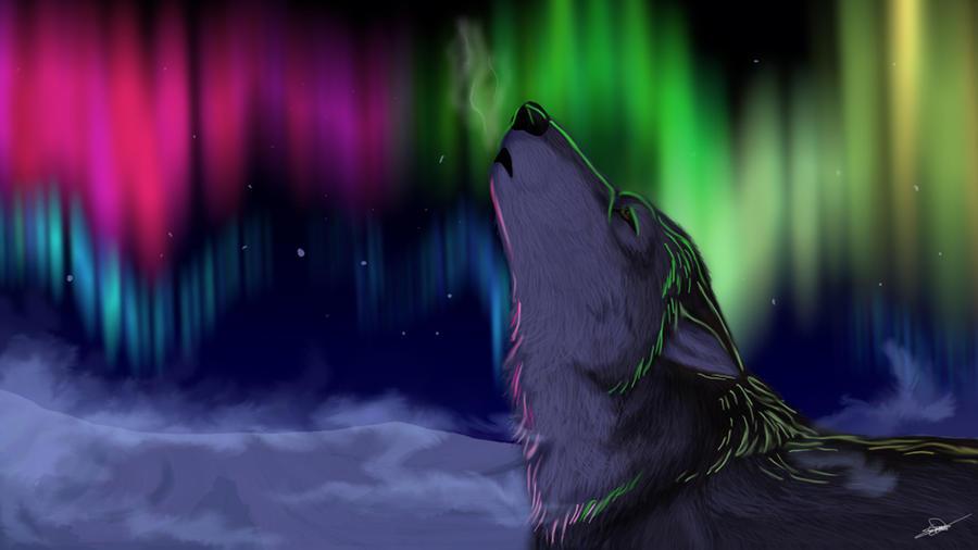 Prize: Lights in the sky by HikariSilverEye