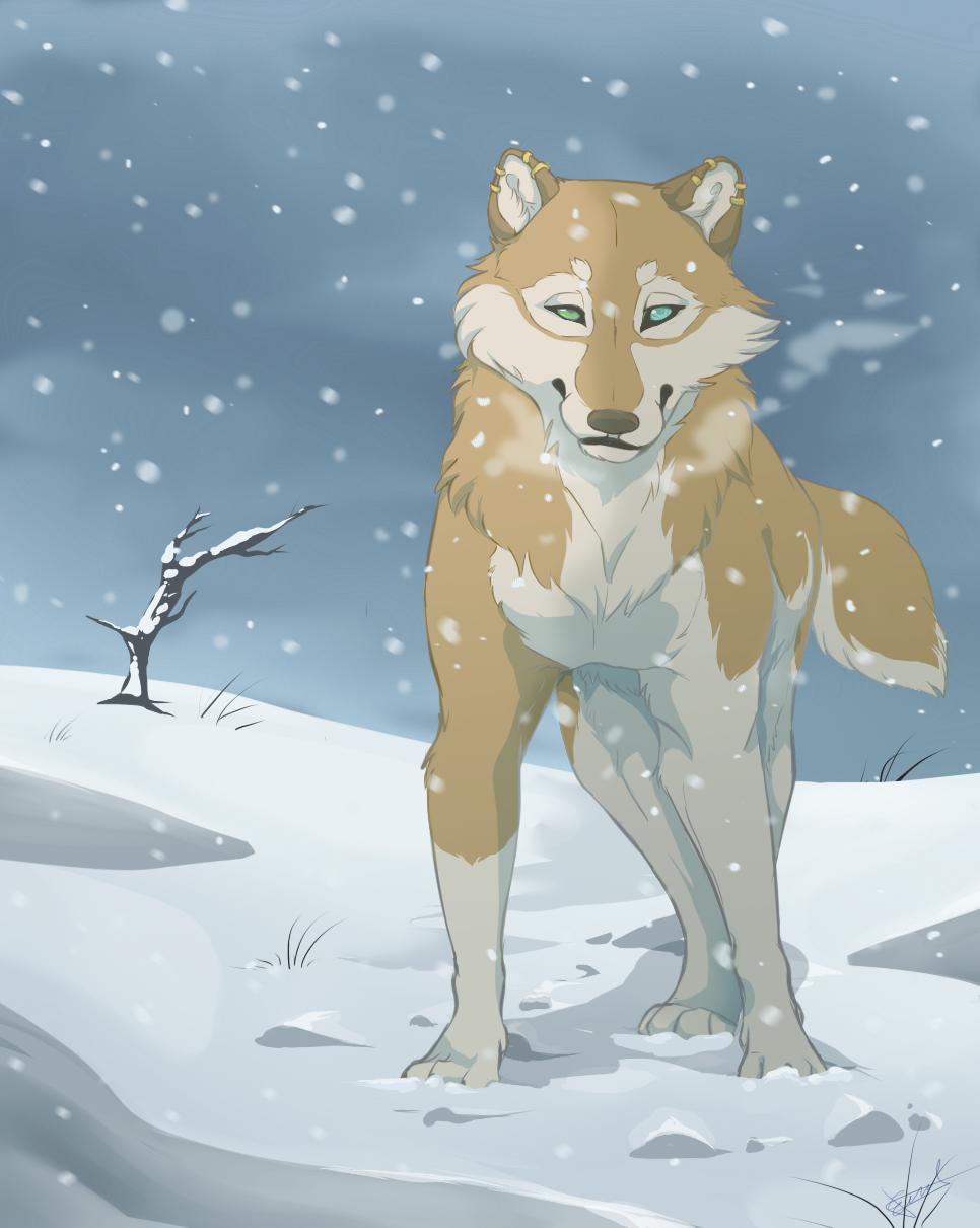 Hikari on snow by HikariSilverEye
